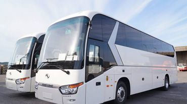 53 seater luxary bus - city tour